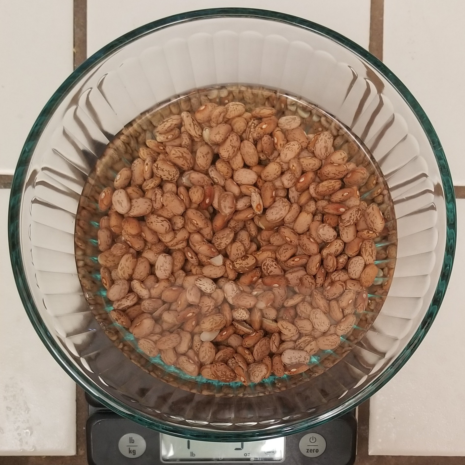 Pinto beans in water.